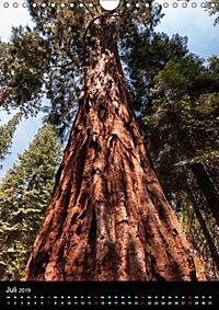 Idylle Pur - Der Yosemite National Park (Wandkalender 2019 DIN A4 hoch) - Produktdetailbild 7