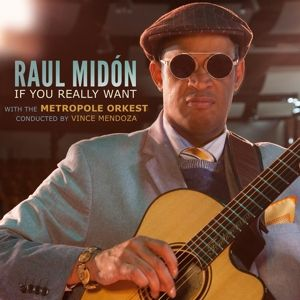 If You Really Want, Raul Midn