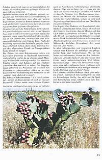 Illustrierte Kakteen-Enzyklopädie - Produktdetailbild 6
