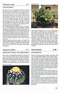 Illustrierte Kakteen-Enzyklopädie - Produktdetailbild 2