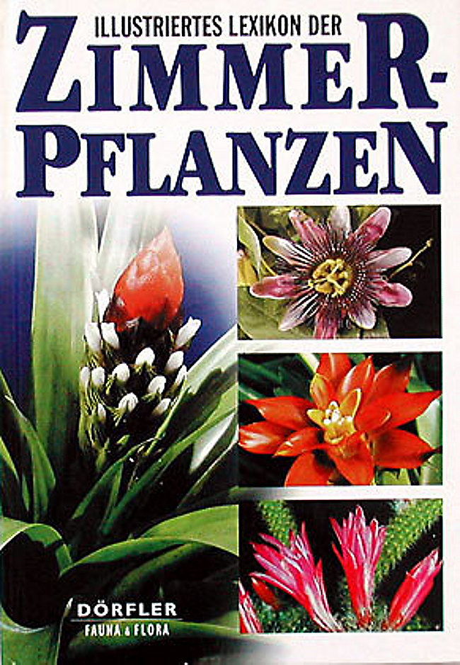 Illustriertes Lexikon Der Zimmerpflanzen Buch Portofrei Bestellen