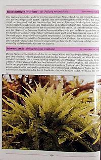 Illustriertes Lexikon der Zimmerpflanzen - Produktdetailbild 2