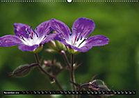 Im Reich der Fanes - Sagenwelt der Dolomiten (Wandkalender 2019 DIN A2 quer) - Produktdetailbild 5