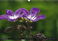 Im Reich der Fanes - Sagenwelt der Dolomiten (Wandkalender 2019 DIN A3 quer) - Produktdetailbild 1