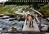 Im Reich der Fanes - Sagenwelt der Dolomiten (Tischkalender 2019 DIN A5 quer) - Produktdetailbild 8