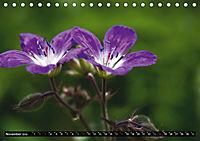 Im Reich der Fanes - Sagenwelt der Dolomiten (Tischkalender 2019 DIN A5 quer) - Produktdetailbild 11