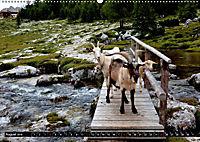 Im Reich der Fanes - Sagenwelt der Dolomiten (Wandkalender 2019 DIN A2 quer) - Produktdetailbild 8