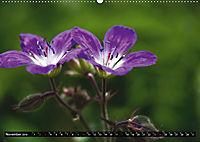 Im Reich der Fanes - Sagenwelt der Dolomiten (Wandkalender 2019 DIN A2 quer) - Produktdetailbild 11