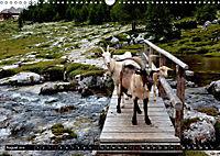 Im Reich der Fanes - Sagenwelt der Dolomiten (Wandkalender 2019 DIN A3 quer) - Produktdetailbild 8