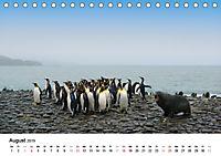 Im Reich der Pinguine (Tischkalender 2019 DIN A5 quer) - Produktdetailbild 8
