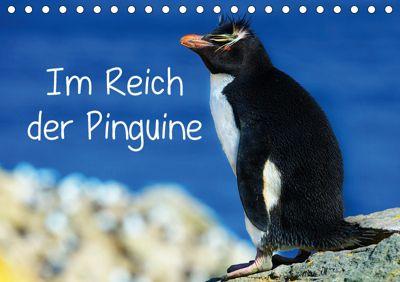 Im Reich der Pinguine (Tischkalender 2019 DIN A5 quer), Hans-Gerhard Pfaff