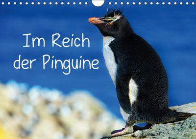 Im Reich der Pinguine (Wandkalender 2019 DIN A4 quer), Hans-Gerhard Pfaff