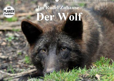 Im Rudel Zuhause - Der Wolf (Wandkalender 2019 DIN A2 quer), Arno Klatt
