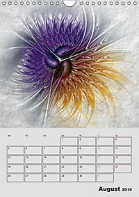 Impressionen auf Stein (Wandkalender 2019 DIN A4 hoch) - Produktdetailbild 8