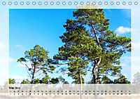 Impressionen aus dem Tister Bauernmoor (Tischkalender 2019 DIN A5 quer) - Produktdetailbild 5