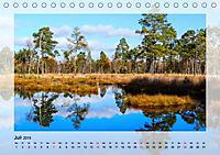 Impressionen aus dem Tister Bauernmoor (Tischkalender 2019 DIN A5 quer) - Produktdetailbild 7