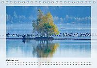 Impressionen aus dem Tister Bauernmoor (Tischkalender 2019 DIN A5 quer) - Produktdetailbild 10