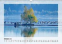 Impressionen aus dem Tister Bauernmoor (Wandkalender 2019 DIN A3 quer) - Produktdetailbild 10