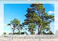 Impressionen aus dem Tister Bauernmoor (Wandkalender 2019 DIN A3 quer) - Produktdetailbild 5