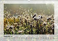 Impressionen aus dem Tister Bauernmoor (Wandkalender 2019 DIN A3 quer) - Produktdetailbild 9