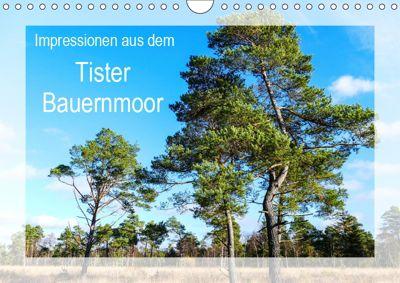 Impressionen aus dem Tister Bauernmoor (Wandkalender 2019 DIN A4 quer), Gabi Hampe