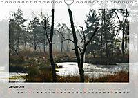 Impressionen aus dem Tister Bauernmoor (Wandkalender 2019 DIN A4 quer) - Produktdetailbild 1