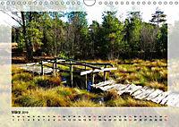 Impressionen aus dem Tister Bauernmoor (Wandkalender 2019 DIN A4 quer) - Produktdetailbild 3