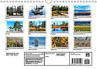 Impressionen aus dem Tister Bauernmoor (Wandkalender 2019 DIN A4 quer) - Produktdetailbild 13