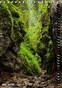 Impressionen aus der Tatra (Tischkalender 2019 DIN A5 hoch) - Produktdetailbild 5