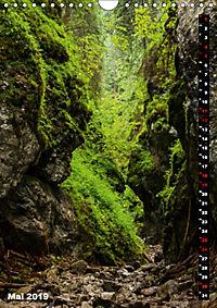 Impressionen aus der Tatra (Wandkalender 2019 DIN A4 hoch) - Produktdetailbild 5
