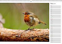 Impressionen aus Schottland (Wandkalender 2019 DIN A3 quer) - Produktdetailbild 5