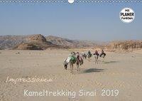 Impressionen Kameltrekking Sinai 2019 (Wandkalender 2019 DIN A3 quer), Mucki Wesselak