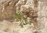 Impressionen Kameltrekking Sinai 2019 (Wandkalender 2019 DIN A3 quer) - Produktdetailbild 7