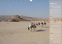 Impressionen Kameltrekking Sinai 2019 (Wandkalender 2019 DIN A3 quer) - Produktdetailbild 6