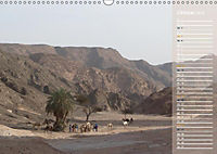 Impressionen Kameltrekking Sinai 2019 (Wandkalender 2019 DIN A3 quer) - Produktdetailbild 11