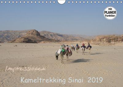 Impressionen Kameltrekking Sinai 2019 (Wandkalender 2019 DIN A4 quer), Mucki Wesselak