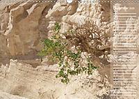 Impressionen Kameltrekking Sinai 2019 (Wandkalender 2019 DIN A3 quer) - Produktdetailbild 12