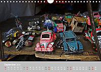 Impressionen vom Kap (Wandkalender 2019 DIN A4 quer) - Produktdetailbild 9