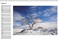 Impressions from the USA / UK-Version (Wall Calendar 2019 DIN A3 Landscape) - Produktdetailbild 6