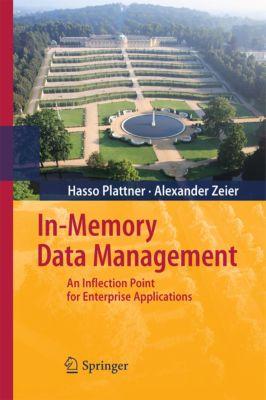 In-Memory Data Management, Alexander Zeier, Hasso Plattner