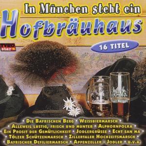 In München steht ein Hofbräuhaus, Various