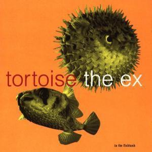 In The Fishtank, Tortoise & The Ex