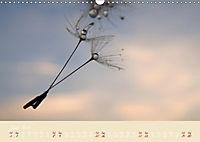 Inconspicuous Beauty - Dandelion (Wall Calendar 2019 DIN A3 Landscape) - Produktdetailbild 6