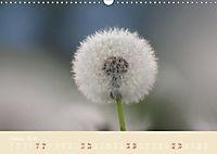 Inconspicuous Beauty - Dandelion (Wall Calendar 2019 DIN A3 Landscape) - Produktdetailbild 10