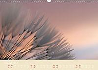 Inconspicuous Beauty - Dandelion (Wall Calendar 2019 DIN A3 Landscape) - Produktdetailbild 2