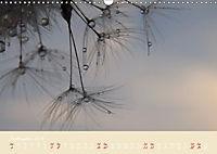 Inconspicuous Beauty - Dandelion (Wall Calendar 2019 DIN A3 Landscape) - Produktdetailbild 9