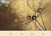Inconspicuous Beauty - Dandelion (Wall Calendar 2019 DIN A3 Landscape) - Produktdetailbild 7