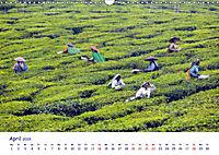 Indien - Eine Fotoreise vom Norden bis in den Süden (Wandkalender 2019 DIN A3 quer) - Produktdetailbild 4