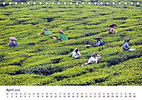 Indien - Eine Fotoreise vom Norden bis in den Süden (Tischkalender 2019 DIN A5 quer) - Produktdetailbild 4