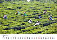 Indien - Eine Fotoreise vom Norden bis in den Süden (Wandkalender 2019 DIN A4 quer) - Produktdetailbild 4